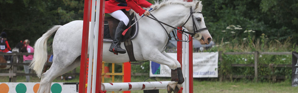 Grey Pony Jumping