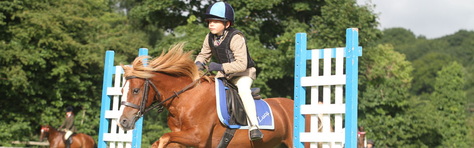 Concentrating Young Jumper