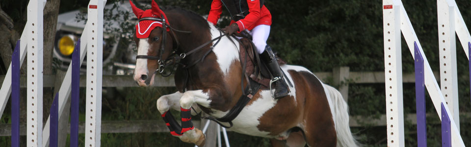 Skewbald Jumping In Red